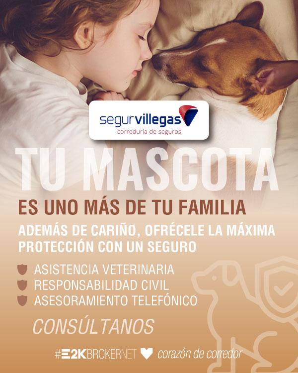 Mascotas Perros Gatos Seguros Segurvillegas Torrelavega Cabezon Corrales Cantabria santander torrelavega cantabria