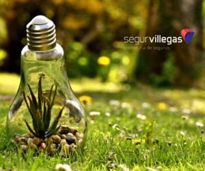 Dia Internacional a la sostenibilidad